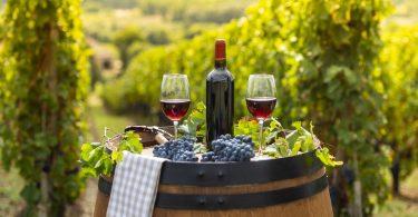 meilleur verre à Bordeaux